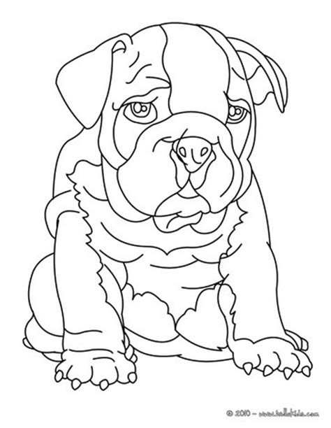 coloring pages of bulldog puppies bulldog coloring pages hellokids com