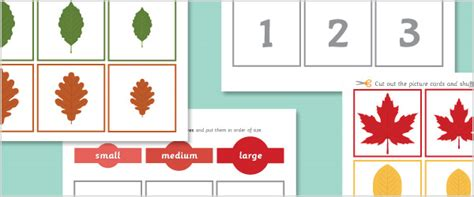 card sort activity template autumn leaves size sorting activity free early