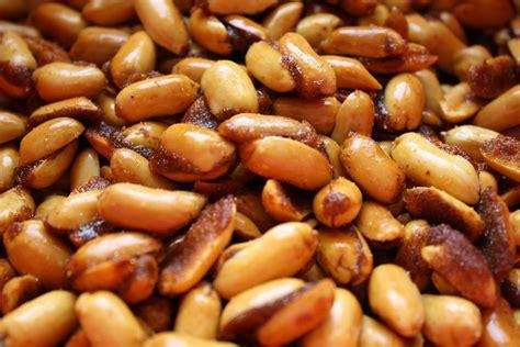 honey roasted chipotle peanuts braised anatomy