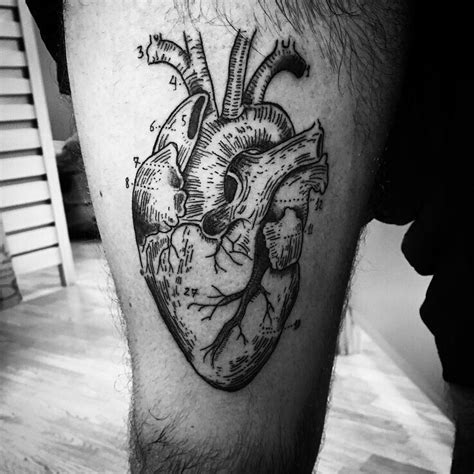 heart tattoo designs tumblr 110 best anatomical designs meanings 2018
