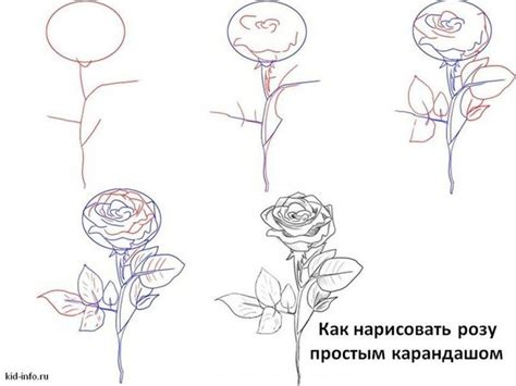 imagenes de flores para dibujar faciles paso a paso dibujar rosas paso a paso imagui
