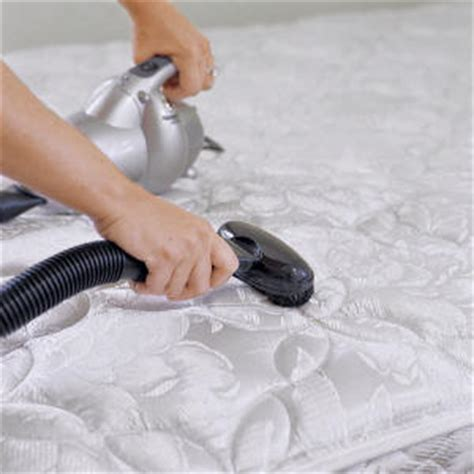 bed bug cleaning get rid of bed bugs with mattress cleaning