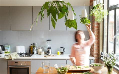 lade da muro fai da te 36 ideias para montar o seu jardim vertical site de mulher