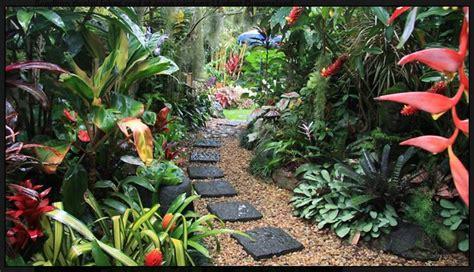 terrasse mit teich 4236 rainforest feel for the garden for the garden