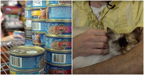 Orlando Pet Pantry by Keeping Low Income Seniors And Pets Together The Animal