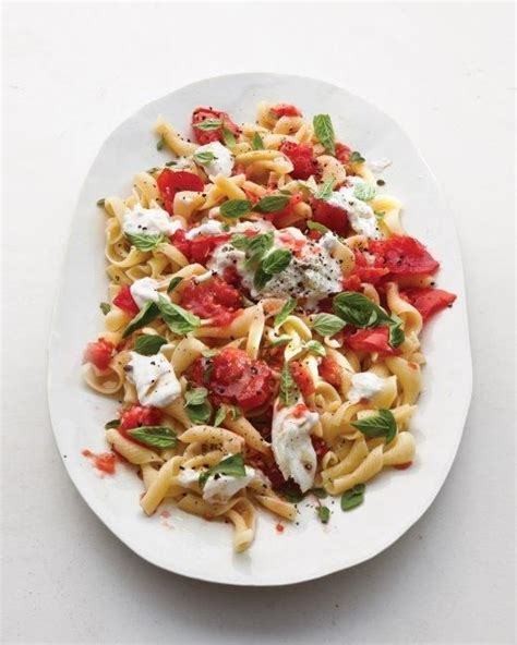 cold pasta dish tomato and basil pasta recipe sun recipes and cold
