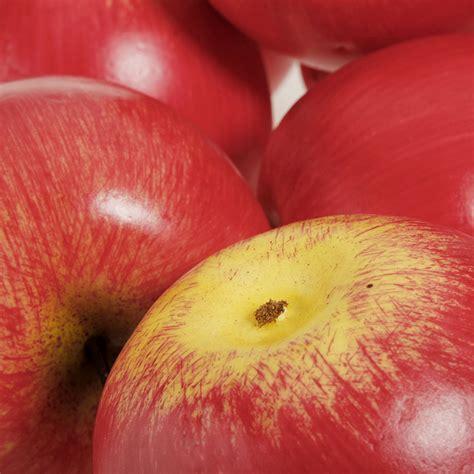Squishy Apel Gigit Apple Squishy home decorative green apples fruit