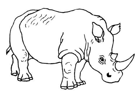 belajar mewarnai hewan badak