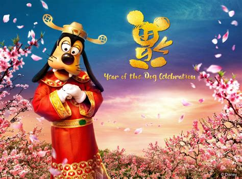 year of the year of the celebrations at hong kong disneyland