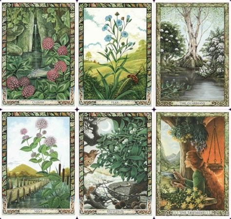 libro the druid plant oracle druid plant oracle mystic house tarot shop mystic