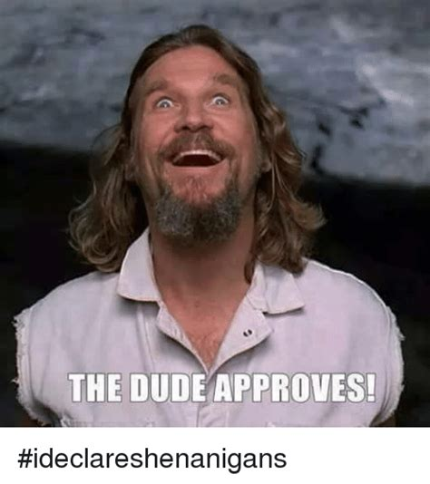 The Dude Meme - 25 best memes about the dude approves the dude approves
