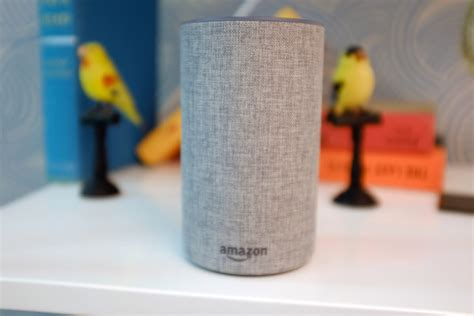 launches its echo devices and in japan
