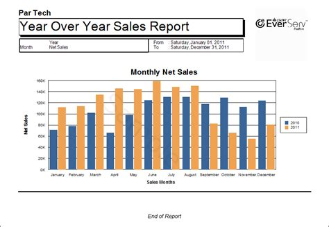 financial report format in excel excel sales report template blank