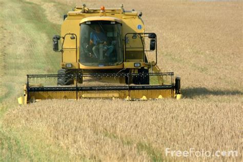 a combine harvester at work pictures free use image 07