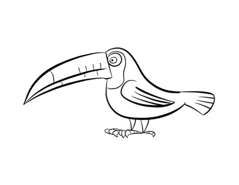 free coloring pages of a toucan