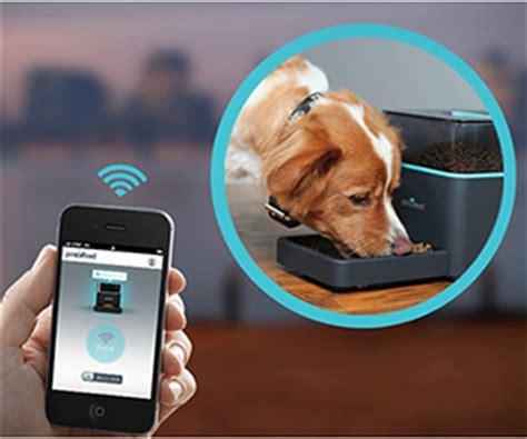 Remote Pet Feeder pintofeed remote pet feeder