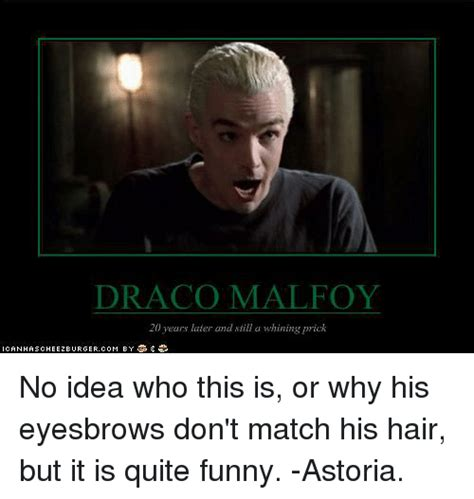 Draco Malfoy Memes - draco malfoy 20 years later and still a whining prick no