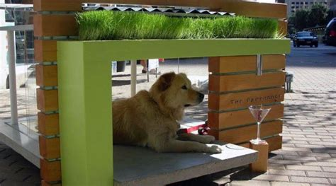 cool dog houses to build top 50 best cool dog houses pads for man s best friend