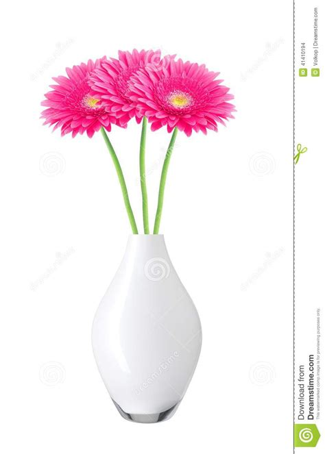 Flowers In White Vase by Beautiful Pink Gerbera Flowers In Vase Isolated On