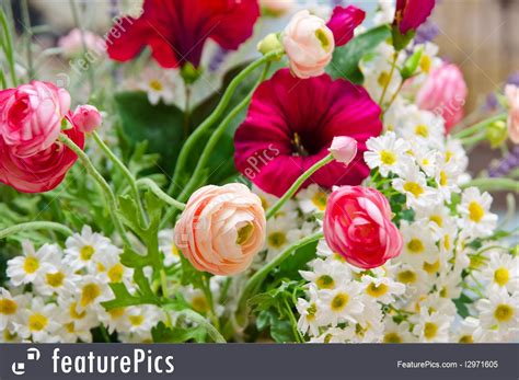 Wedding Flower Bunch by Wedding Bunch Of Flowers Stock Image I2971605 At Featurepics