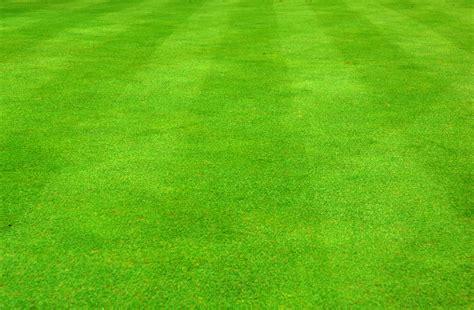 grass background clipart jpg soccer trickscom