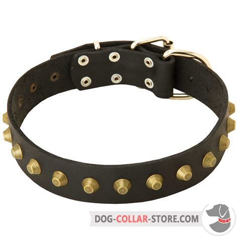 studded leather collars get walking wide leather collar studded gear