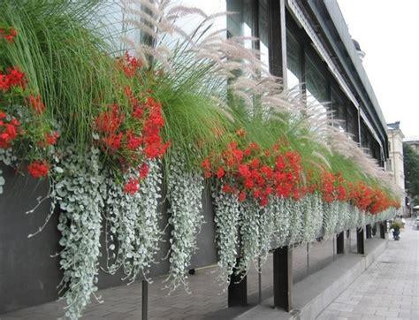 progettare un balcone fiorito progettare un balcone fiorito forum di giardinaggio it