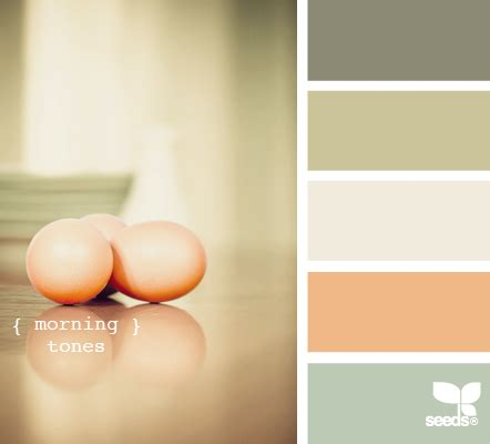 color inspiration from design seeds decor hacks