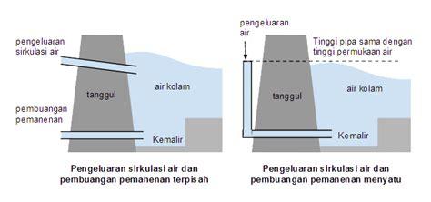 Kolam Minimalis 2x2 M cara membuat kolam ikan alam tani