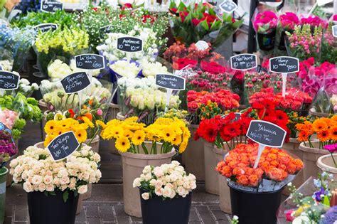 Flowers For Sale by Flowers For Sale At Flower Market Amsterdam