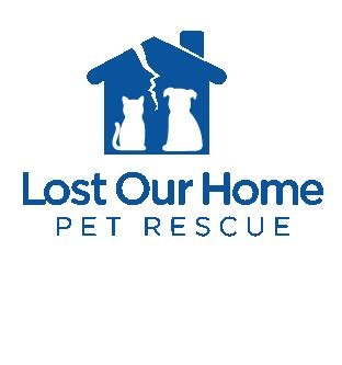 lost our home helping saving pets