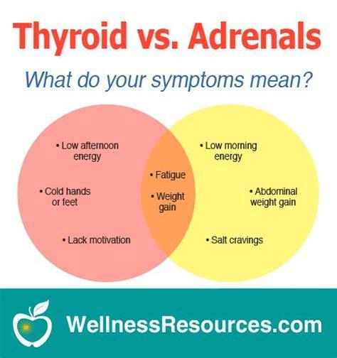 Adrenal Gland Detox Symptoms by Best 25 Thyroid Symptoms Ideas On