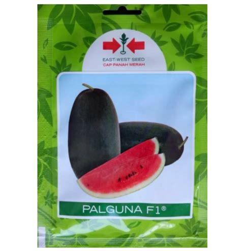 Benih Buah Semangka benih panah merah semangka palguna f1 10 gram jual