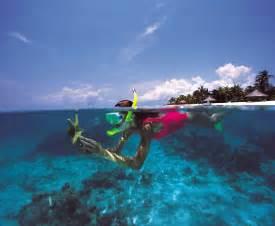 Image library hilton snorkeling 300dpi