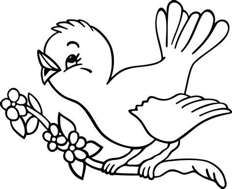 bird coloring page bird coloring pages clipart
