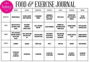 food and exercise journal template weight loss log template excel