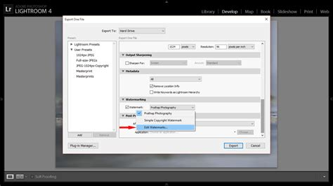 lightroom tutorial watermark post processing tips for bird photography import export