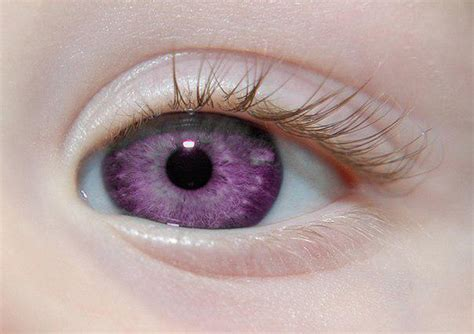 purple eye color the rarest eye color in the world page 1