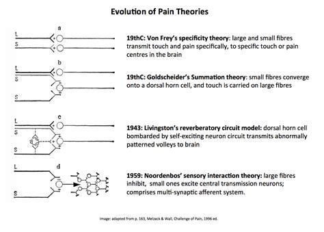 the pattern theory of pain humanantigravitysuit melzack and katz pain part 6f