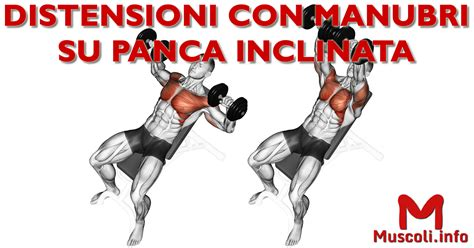 pettorali interni esercizi miglior esercizio per pettorale interno ed esterno