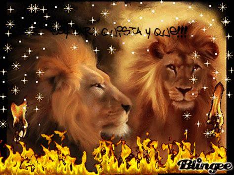 imagenes de los leones del caracas leones del caracas picture 74910792 blingee com