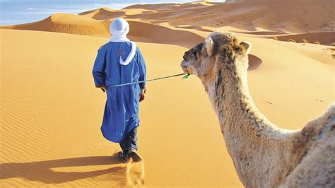 Cheap Holidays to Morocco   Very Cheap Holidays to Morocco