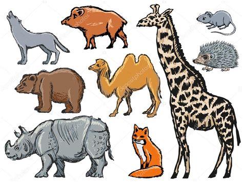 imagenes vectoriales de animales mam 237 feros archivo im 225 genes vectoriales 169 perysty 52275185