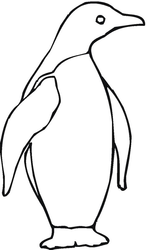 penguin coloring pages coloring kids