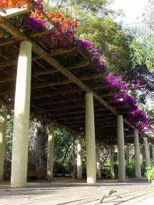 Backyard structures pergola arbor or gazebo the diy hq