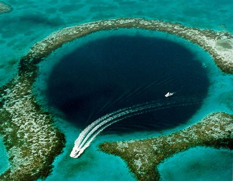 dive belize dive belize the great blue ambergris caye belize