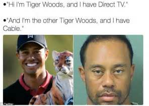 Tiger Woods Meme - tiger woods mugshot gets the meme treatment daily mail