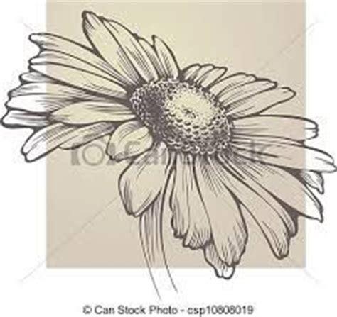 disegni a matita fiori pin di antonio su disegni a matita