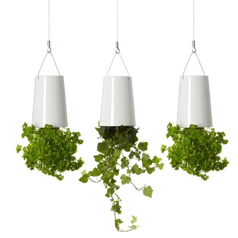 Sky Planter sky planter mini ceramic 3pk by boskke fab