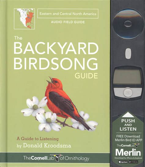 the backyard birdsong guide backyard birdsong guide eastern and central north america